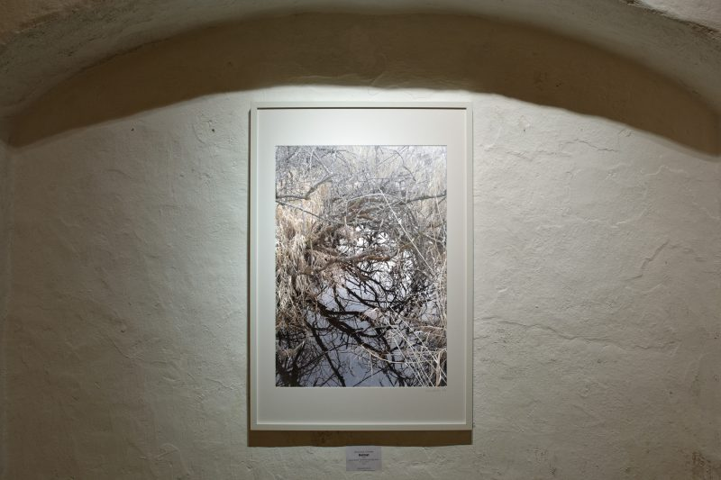 Heimat, 2017, Handyfotografie; Pigmentdruck auf Inkjet Papier, 91 x 61 cm (inkl. Rahmen), 1/10